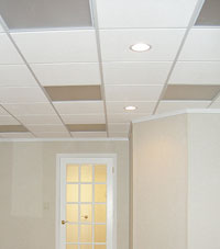 Basement Ceiling Tiles for a project we worked on in Haverstraw